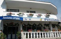 Apartman Békási víztározó közelében, Ursuleț Panzió
