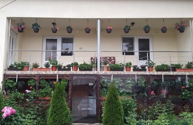 Casa Cosmina Arieșeni