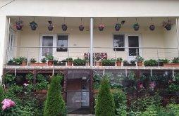 Casă de vacanță Șuștiu, Casa Cosmina
