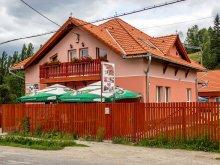 Accommodation Izvoru Berheciului, Tichet de vacanță, Picnic Guesthouse