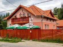 Accommodation Zăpodia (Traian), Picnic Guesthouse