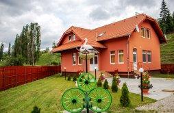 Accommodation Ghimeș Ski Slope, Picnic Guesthouse
