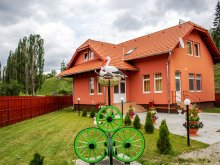 Accommodation Sândominic, Picnic Guesthouse