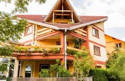 Bed & breakfast Târgoviște, Casa Ara Guesthouse