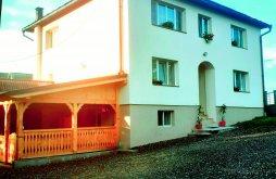 Villa Nagybocskó (Bocicoiu Mare), Hotea Nyaraló