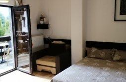 Accommodation Bușteni, Mountain View Studio Apartment