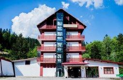 Accommodation Azuga, Pin Hotel
