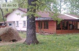 Cazare Bănești, Pensiunea Forest Mirage