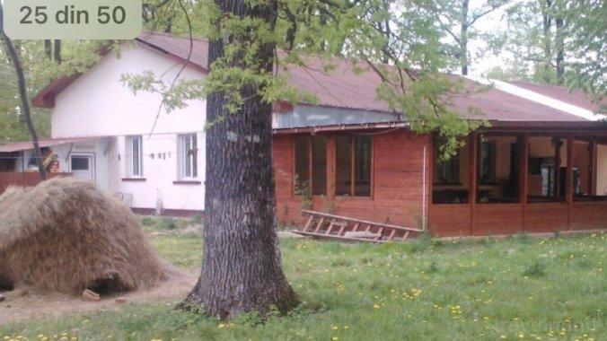 Pensiunea Forest Mirage Bănești