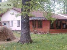 Szállás Bărăști, Forest Mirage Panzió