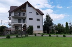 Villa Dumbrăveni (Râșca), Neamt Villa