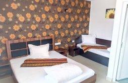 Accommodation Sohodol, Carpati Guesthouse