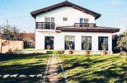 Accommodation Mina Altân Tepe, Codalb Guesthouse