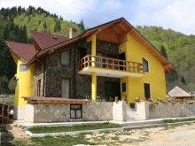 Panzió Szebenjuharos (Păltiniș), Tichet de vacanță, Voineșița Panzió