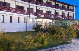 Apartament Dunavățu de Jos, Pensiunea Ambiance