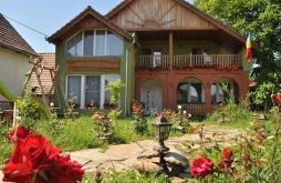 Panzió Fehéregyháza (Albești), Poveste în Transilvania Panzió
