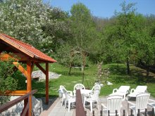 Accommodation Miskolc, Illés Guesthouse