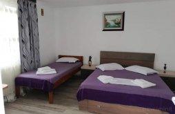 Accommodation Ilganii de Jos, Regina Anastasia Guesthouse