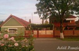 Bed & breakfast Hunedoara county, Adél B&B