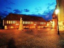 Hotel Győr-Moson-Sopron megye, Hotel Konferencia