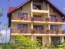 Accommodation Vama Buzăului, Acasă Guesthouse