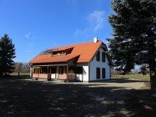 Accommodation Hodoșa, Pension Ezüstfenyő Agrotourism