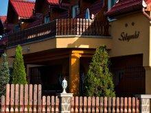 Accommodation Cozmeni, Tichet de vacanță, Sólyomkő Pension