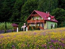 Cabană Nehoiu, Tichet de vacanță, Casa Sólyomkő