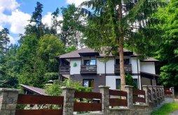 Villa Gyergyócsomafalva sípálya, Laura Villa 2