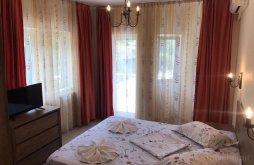 Hostel near Seven Springs Bath Băile Herculane, Paradis Hostel