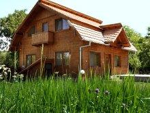 Accommodation Alun (Boșorod), Iancu Guesthouse