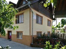 Accommodation Teregova, Iancu Guesthouse