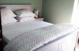 Accommodation Gaiu Mic, Ivan Guesthouse