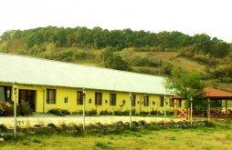 Hostel Domnești, Hostel Două Salcii