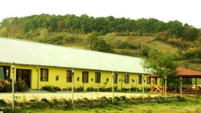 Két Fűzfa Hostel Aiudul de Sus