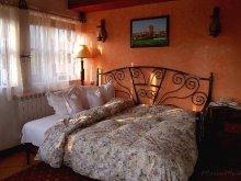 Accommodation Sighiștel, Castelul Maria Vila