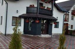 Casă de oaspeți Ivăneasa, Casa Nico&Ştef