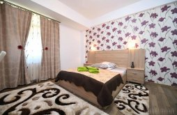 Accommodation near Prislop Monastery, Trident Guesthouse