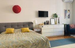 Accommodation Cluj-Napoca, Andrea 2 Apartment