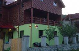 Villa Krassó-Szörény (Caraș-Severin) megye, Dorf Haus Villa
