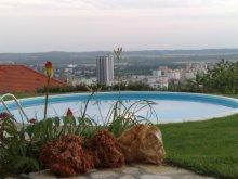 Villa Vokány, Marci Vila