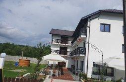 Accommodation Slătioara, Ronicson Guesthouse