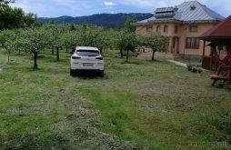 Casă de vacanță Stolniceni-Prăjescu, Casa Ilea