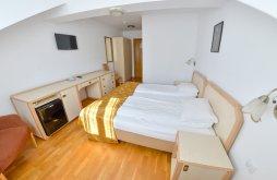 Hotel județul Sibiu, Hotel Gallant