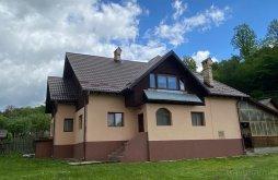 Villa Dragoslavele, Alesi Villa