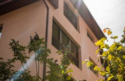 Apartman Bálványosfürdő közelében, Sara Panzió