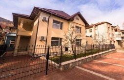 Accommodation Mehedinți county, Flamingo Apartments