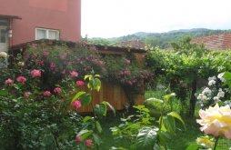 Casă de oaspeți Tomșani, Casa Fabrizio