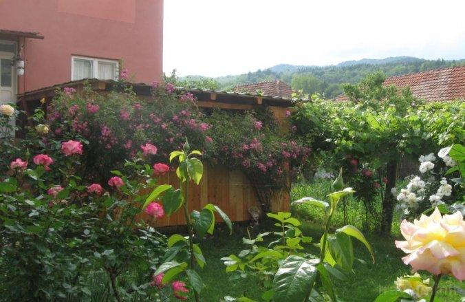 Casa Fabrizio Călimănești