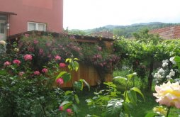 Vendégház Gârnicetu, Fabrizio Vendégház